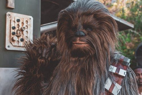 A Chewbacca from Star Wars
