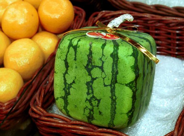 Japanese square watermelon in a basket