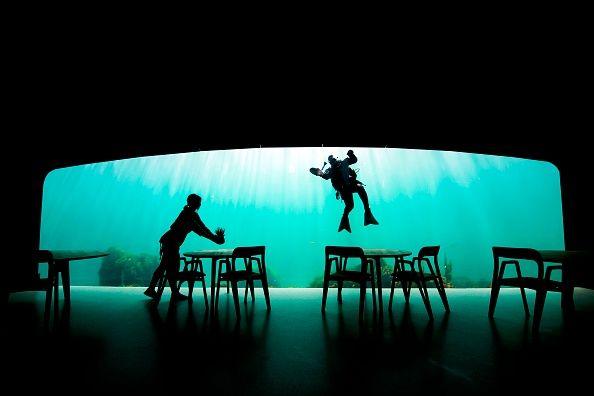 divers setting underwater estaurant tables